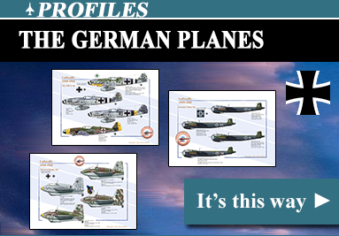 The german planes